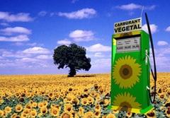 Un nouveau processus de production de biocarburants récompensé par un prix pour l'environnement - Batiweb