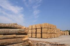 L'entrée en force des ossatures de bois - Batiweb