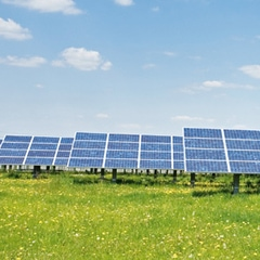 Avez-vous déjà rêvé de visiter une usine de panneaux photovoltaïques ?  - Batiweb