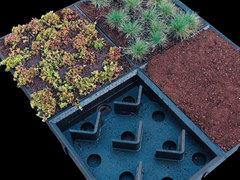 Un pack complet pour la conception de toitures végétales - Batiweb