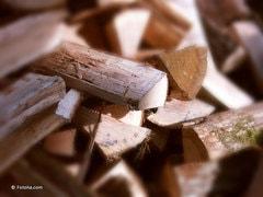 Grande oubliée des énergies vertes, la filière biomasse se structure - Batiweb