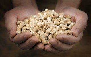 Nouvel appel à projets Biomasse Chaleur Industrie Agriculture et Tertiaire  Batiweb