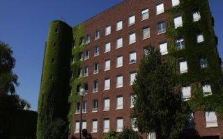 Un campus se transforme en forêt urbaine