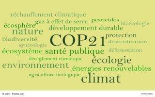 COP21 : 3 propositions pour pousser les entreprises à tenir leurs promesses - Batiweb