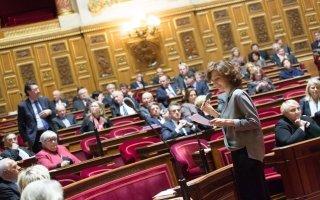 Le Sénat adopte en première lecture le projet de loi création