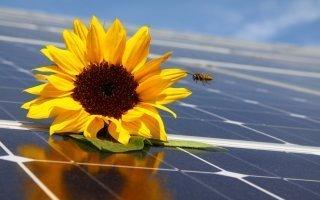 Nouvel appel d'offres pour 3 000 MW de centrales solaires au sol - Batiweb