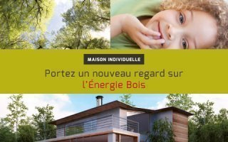 Poujoulat : les systemes bois energie en maison individuelle Batiweb