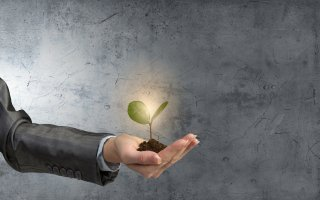 Ségolène Royal lance 4 nouvelles « Intiatives PME » - Batiweb