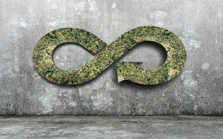 Les matériaux biosourcés, une réponse aux enjeux d'économie circulaire  - Batiweb
