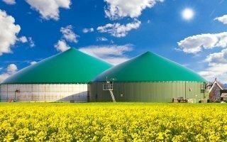 Lutte contre le réchauffement climatique : les énergies renouvelables à la rescousse !