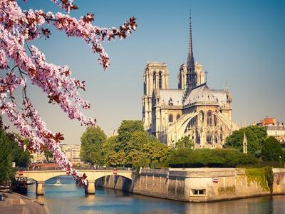 Le Sénat modifie le projet de loi pour la restauration de Notre-Dame de Paris Batiweb