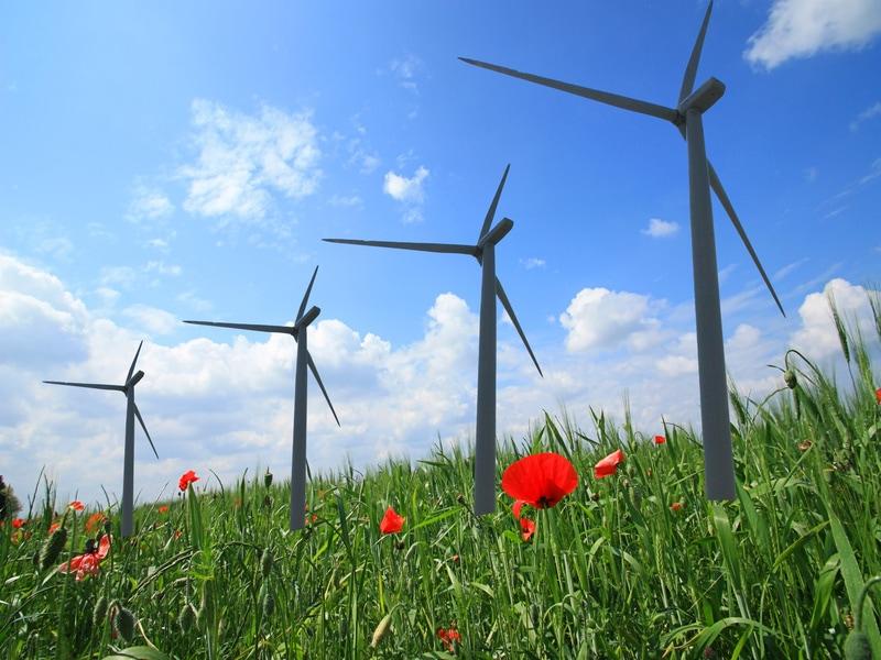 La transition énergétique fait toujours autant progresser les marchés et l'emploi selon l'Ademe - Batiweb