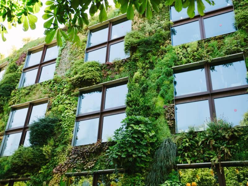 Les Maires du C40 lancent la « Nouvelle Alliance Verte »