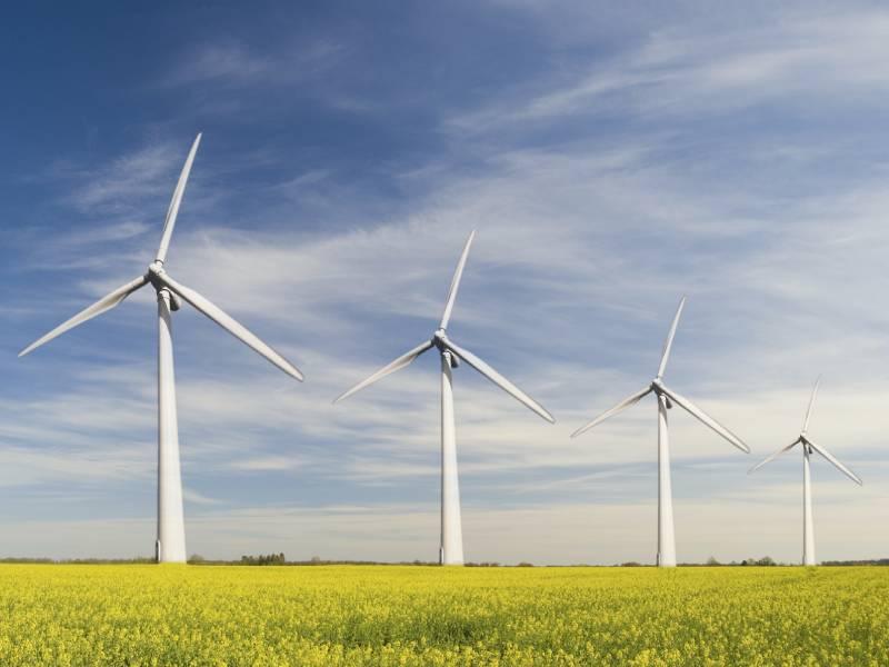La filière éolienne en attente d'une feuille de route « ambitieuse » - Batiweb
