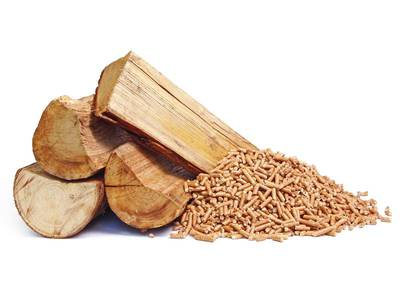 Les chaudiéristes biomasse vantent les avantages du bois Batiweb