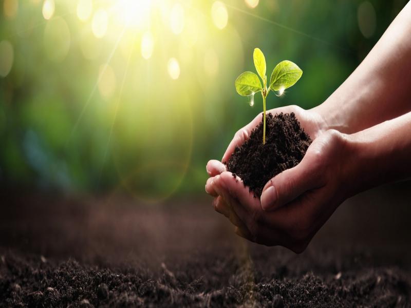 Nexity et Humanité & Biodiversité partenaires pour la préservation des sols naturels - Batiweb