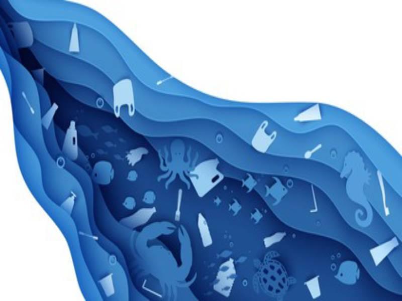 GROHE s'associe à un projet pour l'environnement - Batiweb