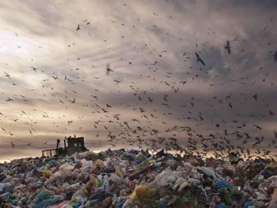 Bientôt la fin de « la mer de déchets» ? Batiweb