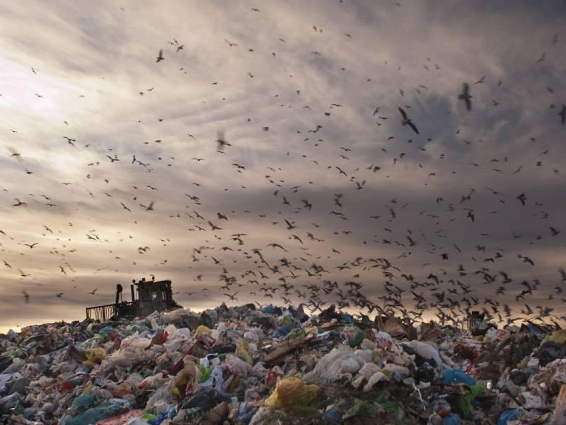 Bientôt la fin de « la mer de déchets» ? - Batiweb