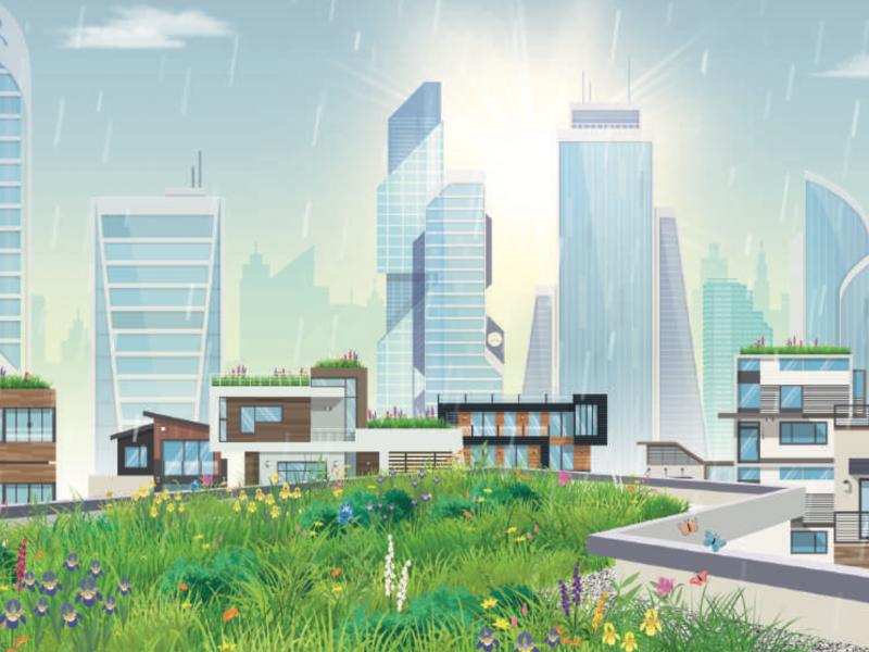 Gestion des eaux de pluie: Soprema présente ses solutions - Batiweb