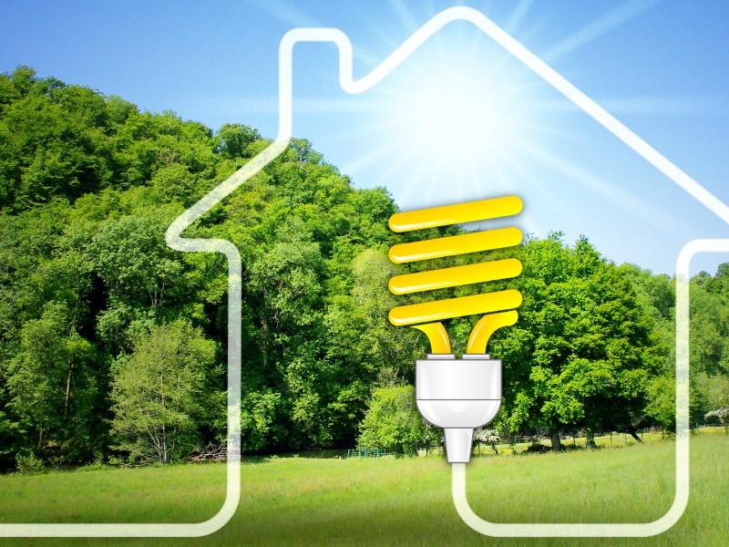 Interface et Bouygues s'engagent en faveur de la construction bas-carbone - Batiweb