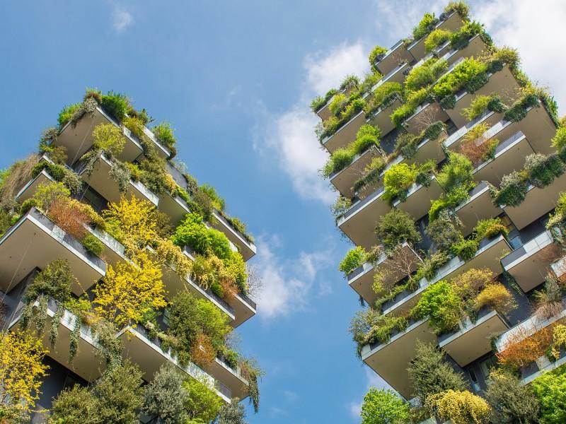 En 2020, NF Habitat HQE progresse de 14% pour le logement collectif en construction - Batiweb