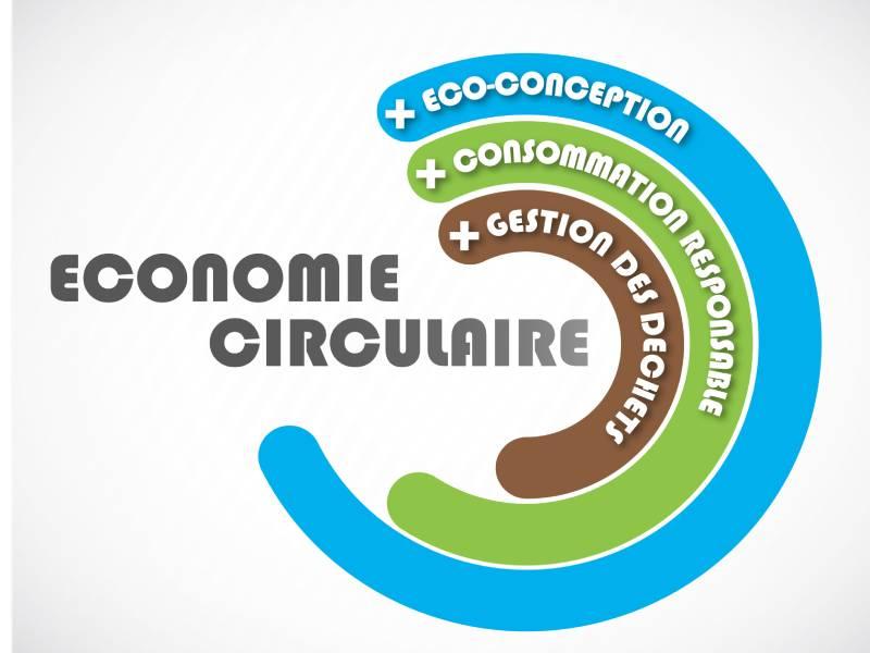 Économie circulaire: Comment transformer le bâtiment en profondeur? - Batiweb