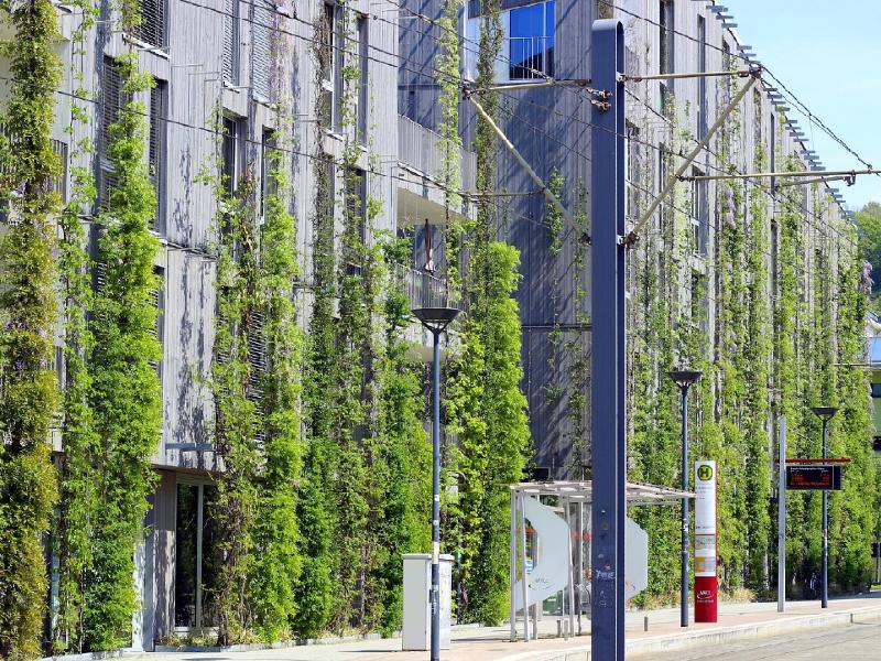 Le projet Solioti offre aux villes une nouvelle génération de murs végétaux éco-responsables - Batiweb