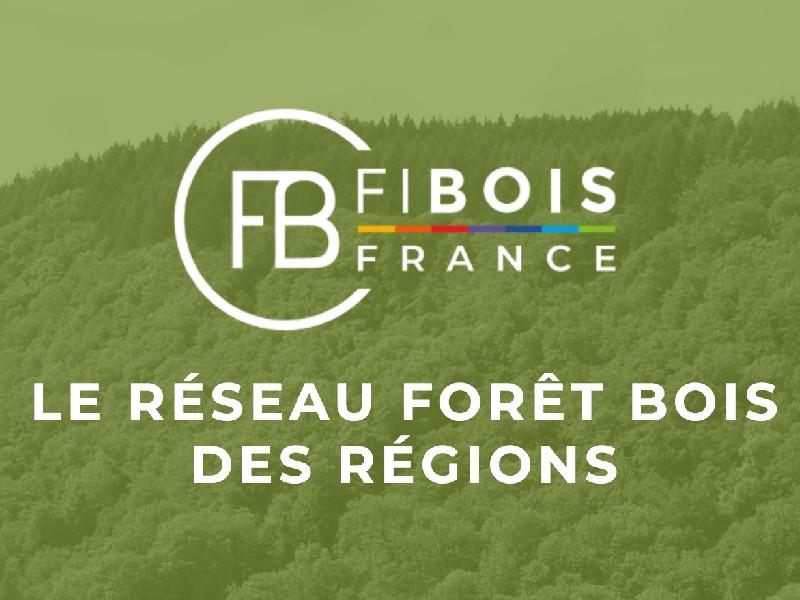 Paul Jarquin nommé président de Fibois France - Batiweb