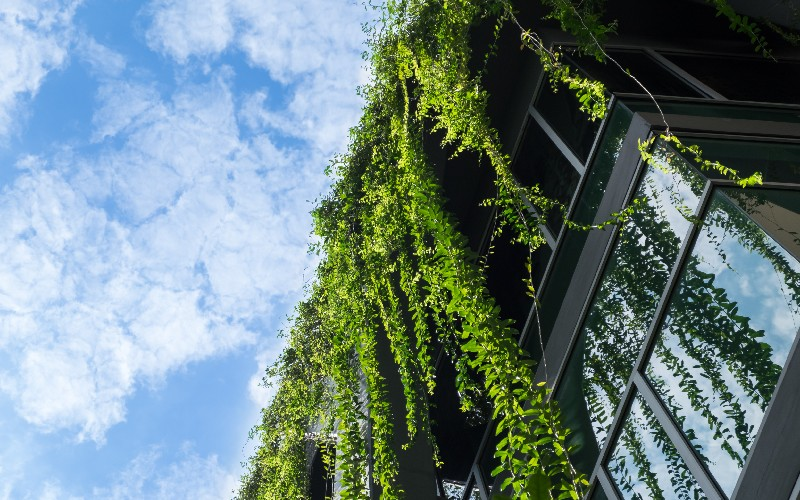 Placo investit 35 millions d'euros dans sa transition écologique - Batiweb