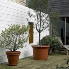 MultiWood, une nouvelle marque entièrement dédiée à la décoration bois - Batiweb