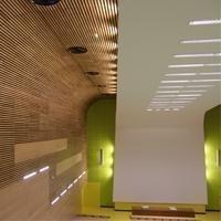 Plafonds bois : SHILUVIT LINE - Batiweb