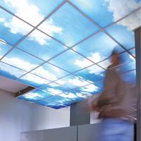 C.Y.L.P. / DALLE DE PLAFOND DECORATIVE ET ACOUSTIQUE Deco-Dal Plafonds Batiweb