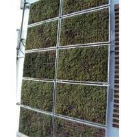 Ecran thermique végétale Vivagreen®  Batiweb