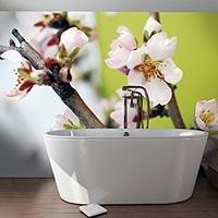 ALYOS design® Murs et Plafonds Imprimés  - Batiweb
