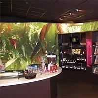 ALYOS design® Murs et Plafonds Imprimés