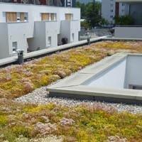Toiture végétale Sopranature® - étancheite - Batiweb