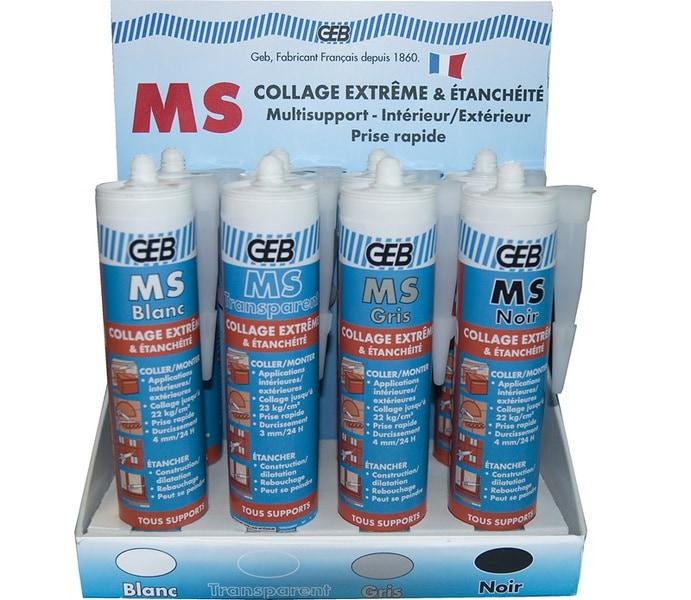 MS, le mastic couleur « tout-terrain »