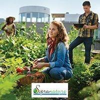 Sopranature® - Cultiva, le potager urbain de la ville verte de demain - Batiweb