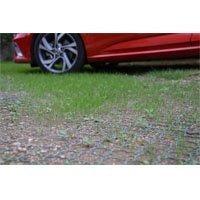 ACO Grass