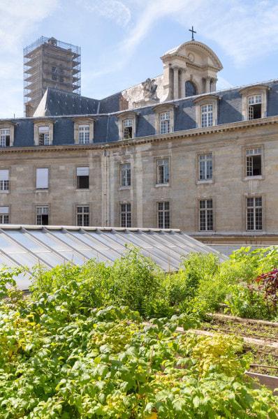 Étanchéité haut de gamme pour toiture-terrasse - Gamme SILVER - Batiweb