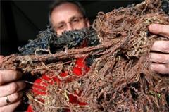 InterfaceFLOR lance le ReEntry 2.0 :  un processus révolutionnaire de recyclage des moquettes  Batiweb