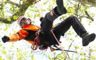 Petzl : partenaire de la Société Française d'Arboriculture et des Rencontres d'arboriculture - Batiweb