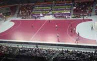 Des sols MADE IN FRANCE pour les championnats du monde de handball masculin au Qatar Batiweb