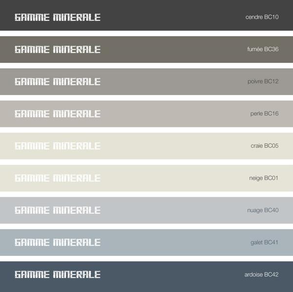 Genial Présentation Du Nouveau Nuancier Microbéton Rouviere Collection