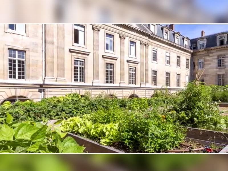 Le Potager et la Vigne de l'Hôtel de Ville - Batiweb