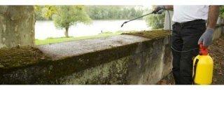 Le nettoyage de toit : un service en plus, à proposer par des pros - Batiweb
