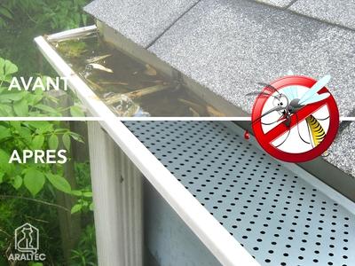 Ne laissez pas vos gouttières devenir un nid à moustiques ! Batiweb