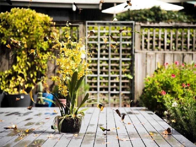 Top 5 des indispensables pour aménager son jardin - Batiweb