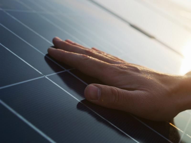 Une isolation efficace et performante des toitures végétalisées ou photovoltaïques - Batiweb
